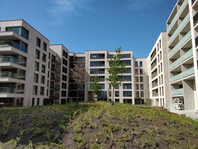 Edificio viviendas Cloche d'Or
